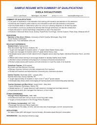 Lovely Photograph Of Resume Professional Summary Examples