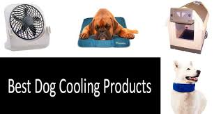 Top 24 Best Dog Cooling Products Complete Buyers Guide 2019