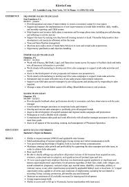 Download Sales Team Lead Resume Sample as Image file