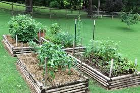beginner vegetable garden. Simple Vegetable Vegetable Gardening For Beginners Intended Beginner Garden E