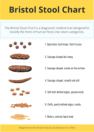 Bristol Stool Chart Diarrhea 79 Abiding Poop Chart What Does It Mean