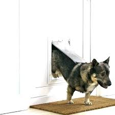 doggy door installers replacement flaps for dog flap white single with large doors extra electronic walls doggy door