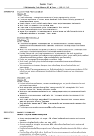 Team Lead Job Description For Resume Best Of Process Lead Resume Samples Velvet Jobs