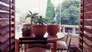 Small Picture Homelife Balcony Gardens