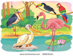 Small Picture Zoo African Animals Small Set African Stock Illustration 386678434