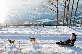 Risultati immagini per winter in montreal 2018