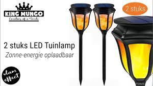 Led Tuinlamp Met Vlameffect Zonne Cel Oplaadbaar Kmgl002 King