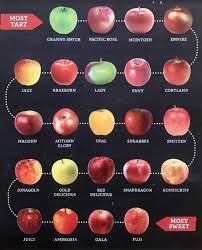 Fruit Comparison Chart Apple Comparison Chart On Reddit Drawing A Lot Of Interest