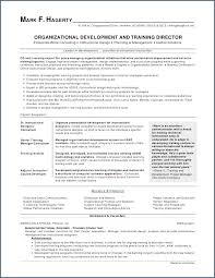 Executive Level Resume Samples New Chronological Resume Example Unique Cool Plete Resume Sample