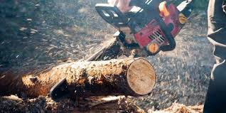 Firewood Weight Chart How To Split Wood Splitting Firewood Guide 2019