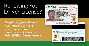 Official License Site Fasano Pasco County Information Driver Mike