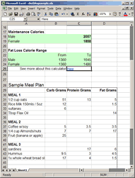 diet spreadsheet how to make your own diet plan