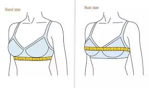What Is Bust In Size Chart What Is The Meaning Of Letters B C Etc In Women Bra