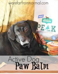 diy active dog paw balm