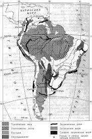 ЧЕЛОВЕК РАССЕЛЕНИЕ И ВЛИЯНИЕ НА ПРИРОДУ ЮЖНОЙ АМЕРИКИ Экологические проблемы Южной Америки