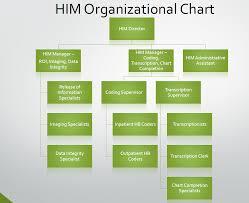 Mha Organisation Chart Him Department Org Chart Health Information Technologies