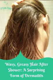 waxy greasy hair after shower a