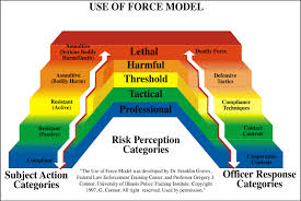 Security Officer Use Of Force Use Of Force Continuum
