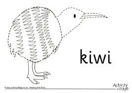 Small Picture Kiwi Colouring Page