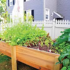 How to Start a Garden   Family Handyman