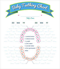 Baby Teething Chart 7 Free Pdf Documents Download Free