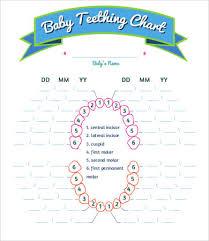 Teething Chart For Babies Baby Teething Schedule Tirevi Fontanacountryinn Com