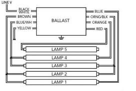 4 lamp ballast wiring diagram pictures to pin t5 4 lamp ballast wiring diagram