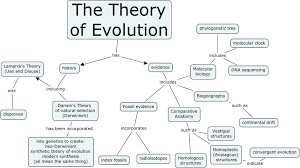 Darwin S Theory Of Evolution Chart Pearson Theory Of Evolution Theory Of Evolution Concept Map Answers