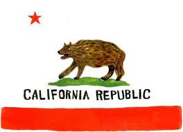 california state flag print