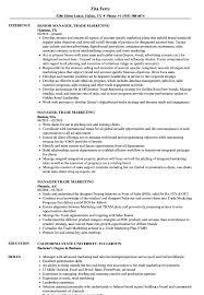 Manager Trade Marketing Resume Samples Velvet Jobs