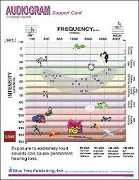 Hearing Chart Audiogram Anatomical Chart Laminated Card For Audiologist