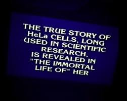 best henrietta lacks images henrietta lacks ap  immortal life of henrietta lacks