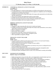 Insurance Account Manager Resume Samples Velvet Jobs