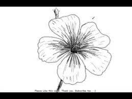 Small Picture How to Draw a Beautiful and Simple Flower YouTube