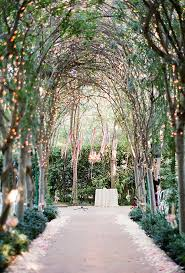A tree-lined aisle gets an ethereal upgrade with the help of hundreds of  twinkling