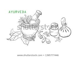 Kerala Vector Icons Download Free Vector Art Stock Graphics Images