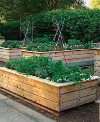 vegetable garden raised beds raised garden