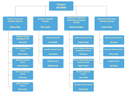 Organizational Chart Of A Company Examples Of Flowcharts Organizational Charts Network