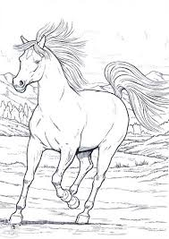 Small Picture Wild Horse Coloring Coloring Coloring Pages