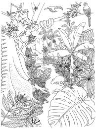 Online coloring > animals jungle. Wonderful Jungle Coloring Page Free Printable Coloring Pages For Kids