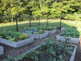 how to keep deer away from garden. uncategorized how to keep deer away from trees shocking vegetable garden fence home design pic of e