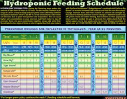 Fox Farm Nutrient Chart Question About Foxfarm Feeding Schedule Hydroponics