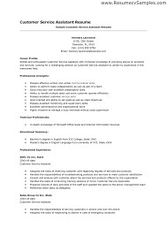 Customer Service Experience Resume Free Resume Example And