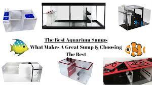 Refugium Sump Design Best Aquarium Sump Refugium In 2020 Reviews