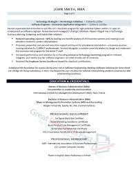 business technology leader resume sample page 3 of 3 engineering executive resume
