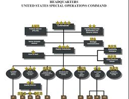 Jsoc Organization Chart Ussocom Us Special Operations Command Boot Camp