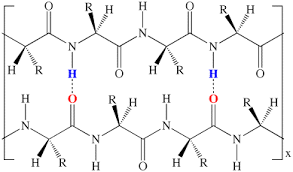 Intermolecular Forces And Dna
