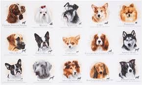 light cream cute dogs name dog breeds fabric by elizabeth s studio 4