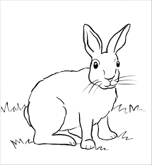 Cute rabbit black and white clipart. Realistic Rabbit Coloring Page To Print Coloringbay