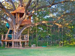 Tree House Plans For Two Trees Occasionally A Tree Will Resist